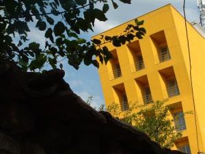 Yellow Palace pic1